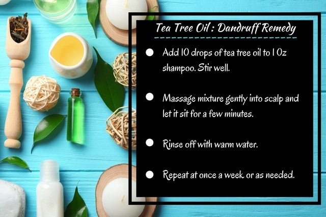 5 Benefits of Tea Tree Oil for your personal and household needs | Find out how to use this toxic-free, tea tree essential oil to remedy itchy, dry scalp, treat acne, banish bad breath and freshen laundry. Plus a recipe for dandruff treatment that has worked for me!
